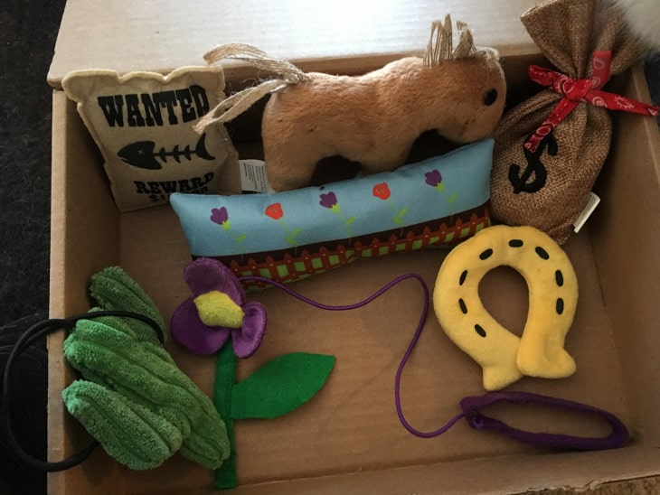 Cat toys in the KitNipBox January 2018