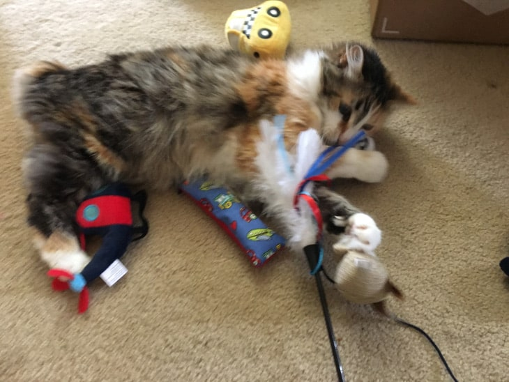 Lina with the toys